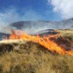 Extinguen incendios forestales en Ayacucho y Huánuco