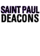 Saint Paul Youth Hoodie