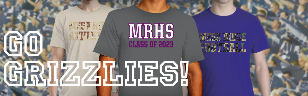 MESA RIDGE HIGH SCHOOL
