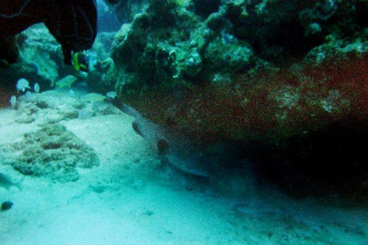 under water 3