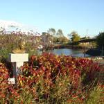 Prescott Park Garden, Portsmouth NH