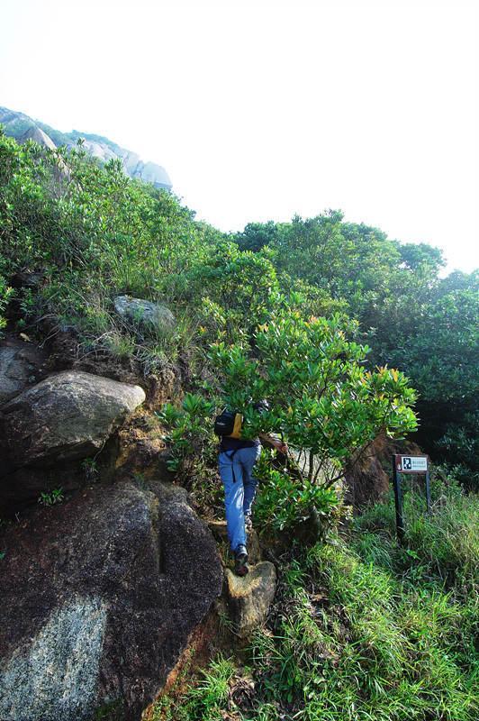 面具石下的護土牆旁路口登山