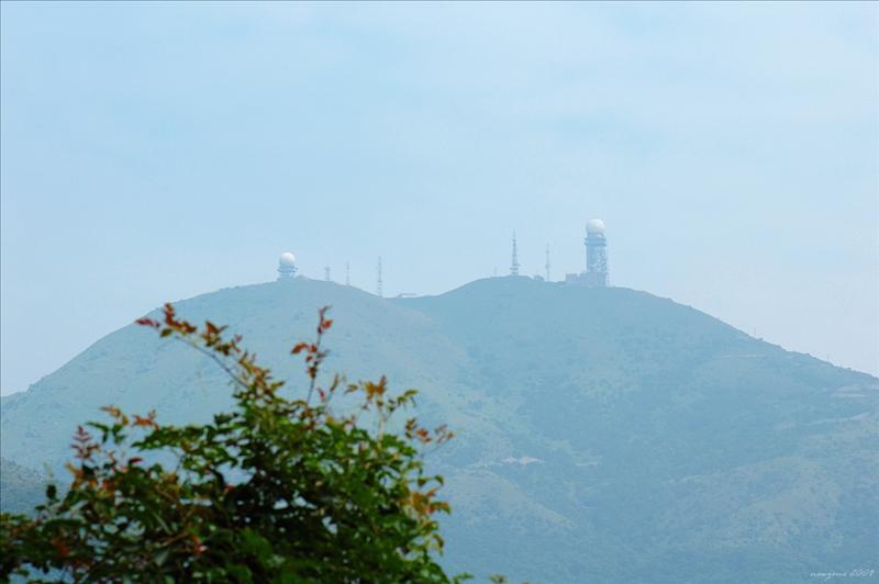 Tai Mo Shan 大帽山