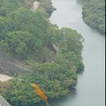 278米山頭下望深山明珠鶴藪水塘