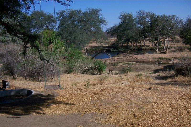 View from the camp on the limpopo river, on the other side South Africa / Vue du camp sur la rivière Limpopo, de l'autre coté l'Afrique du Sud