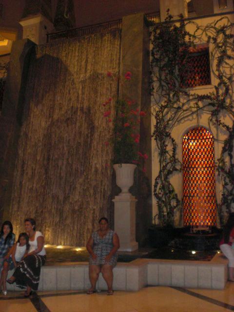 Nikki @ The Palazzo's waterfall