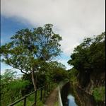 香港仔水塘引水道 Aberdeen Reservoir Catchwater