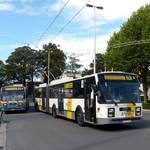 Trolleybus excursie Gent