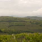 Untitled_Panorama soave.jpg