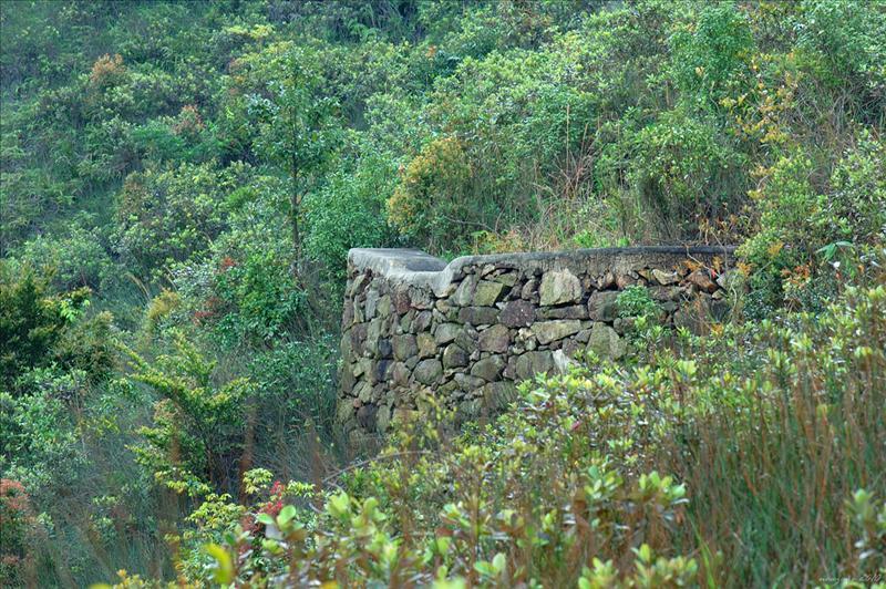 上水泉澳山途經疑似碉堡遺蹟