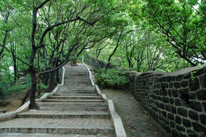 南山公園Namsan Park