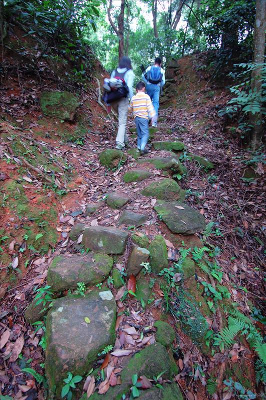 小段上山路徑較為崎嶇