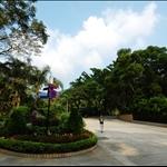 獅子山公園 Lion Rock Park