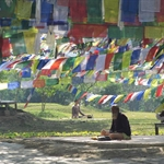 Lumbini, Nepal.JPG