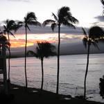 2011 Maui Day 2
