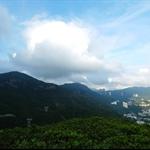 金馬倫山、聶高信山及紫羅蘭山一帶