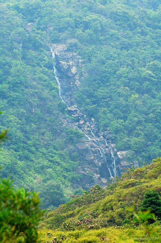 牌額西坑 Pai Ngak West Stream