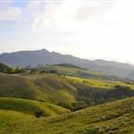 montée monteverde (14).JPG