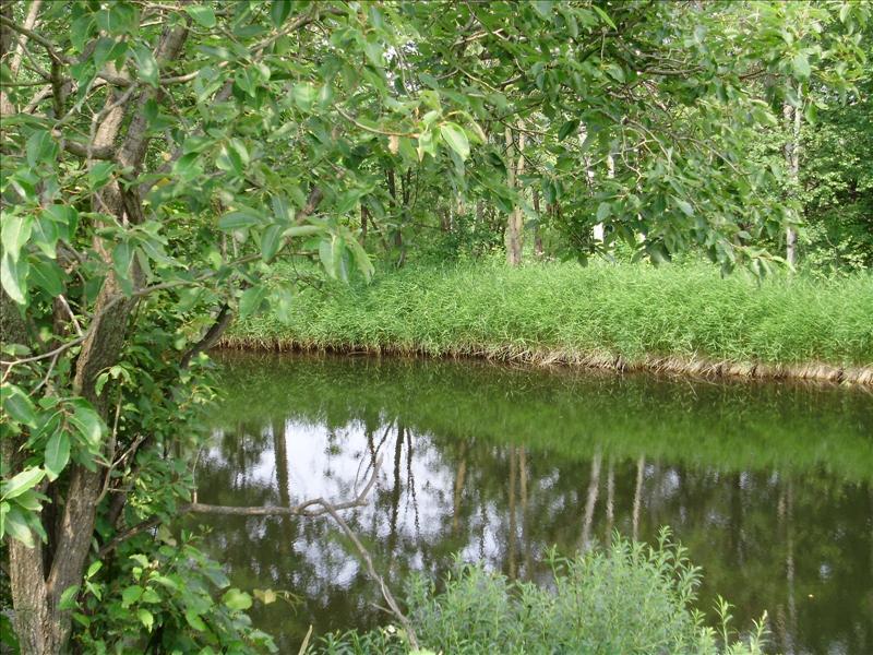 水池,完全迷路,好驚