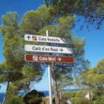 Ibiza 2012