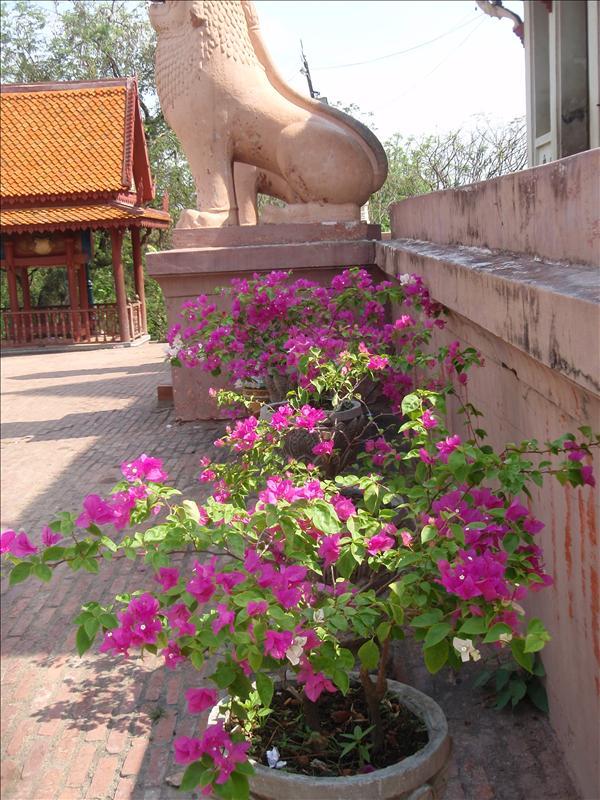 By Wat Phnom
