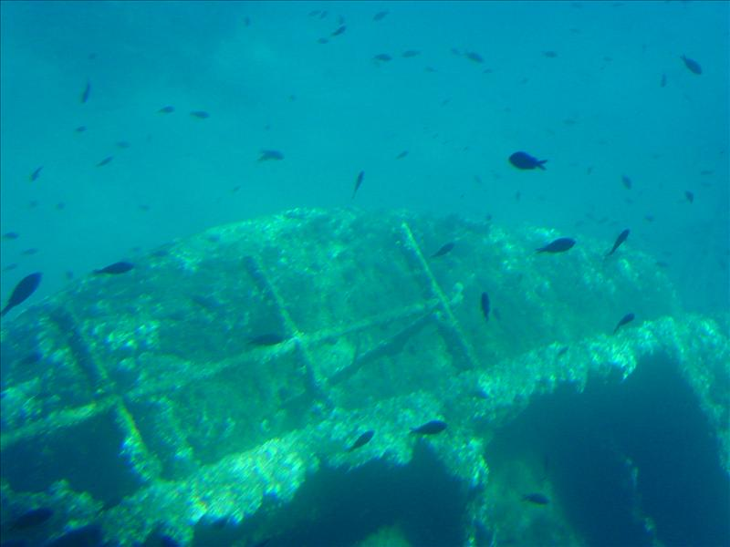 Underwater view from catamaran