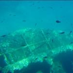 Underwater view from catamaran