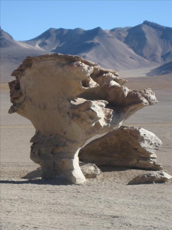 Tree of Stone.jpg