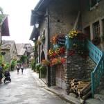 Savoie Region, Home region
