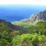 Hawai'i 2011/2