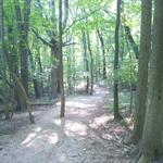 park hiking