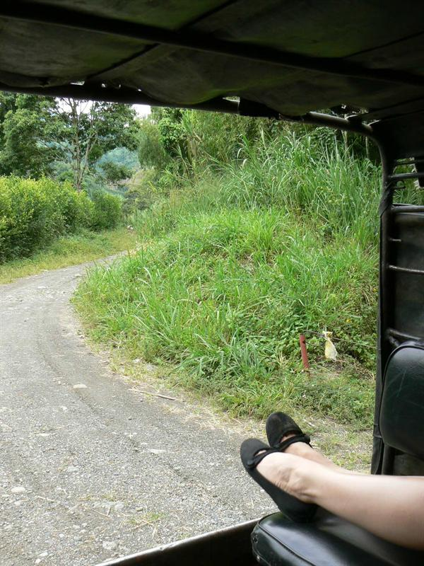 Out the back of the jeep...