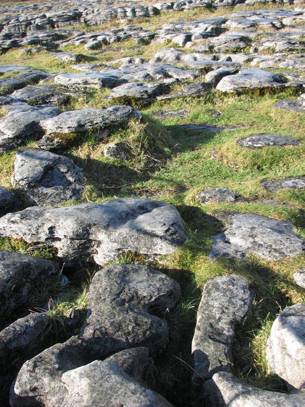 The rocks on the ground were so weird...