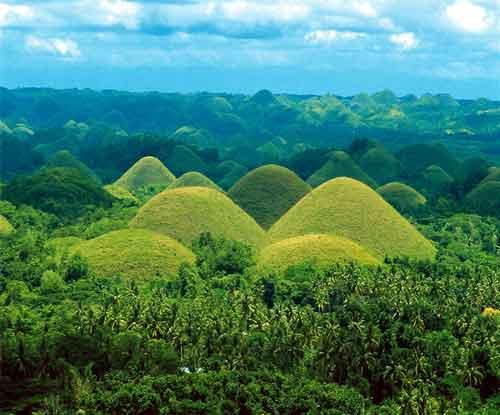 czekoladowe wzgórza, cholate hills / Bohol Island