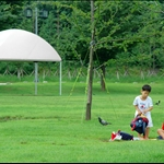 DSC_4985 漢江市民公園 Hangang Park.jpg