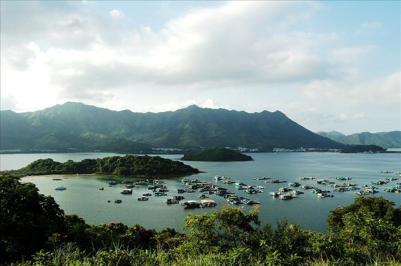 盡覽八仙嶺山脈,前景則為烏浪頭(烏洲),中間的是洋洲