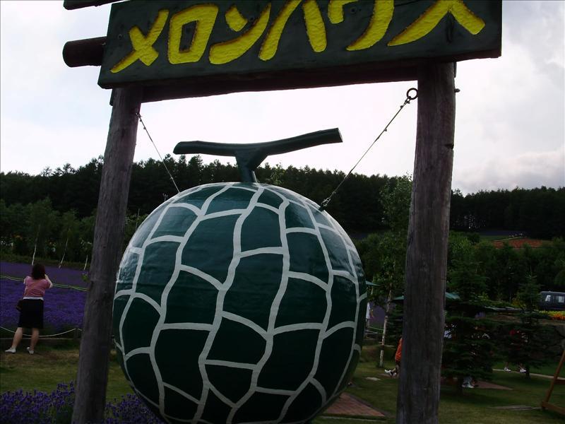 到達富田農場