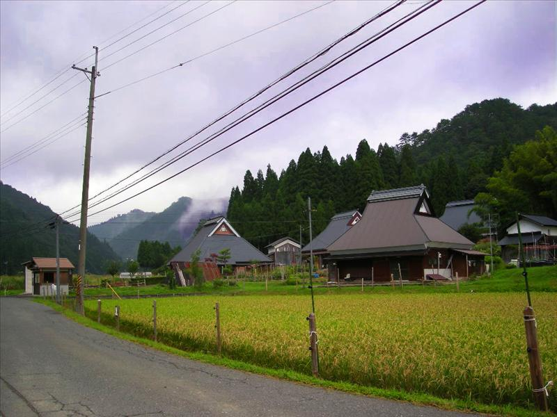 Local View (Japan)