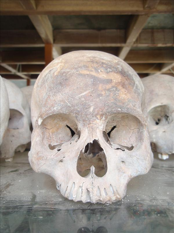 Skulls in the monument at the Killing Fields