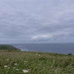 Cornwall 07.2010 042.JPG