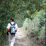 流水響郊遊徑 Lau Shui Heung Country Trail