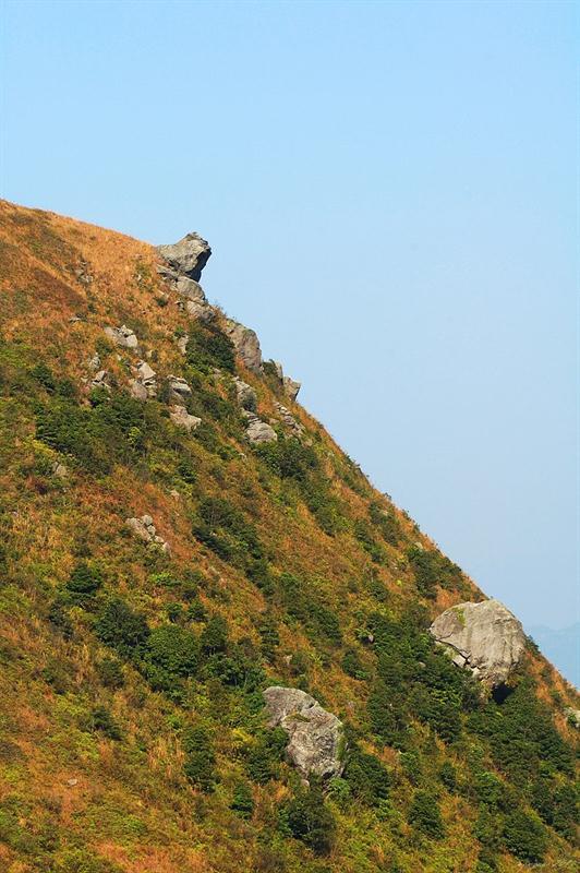 可清楚看見突出來的雷打石山巨石