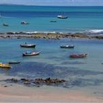 TALA part 30 , Praia Da Pipa