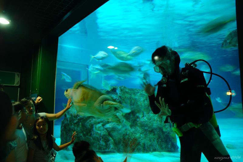 COEX水族館COEX Aquarium