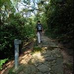 九沙古道 (乾隆古道) KowSha Ancient Trail