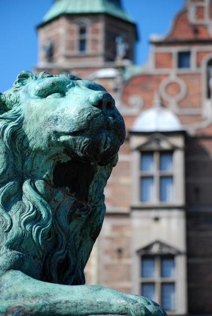 Lion stands guard