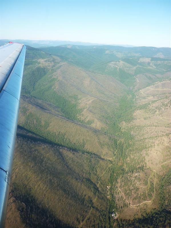 Hello Montana!!