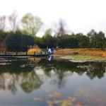 S95-botanical garden