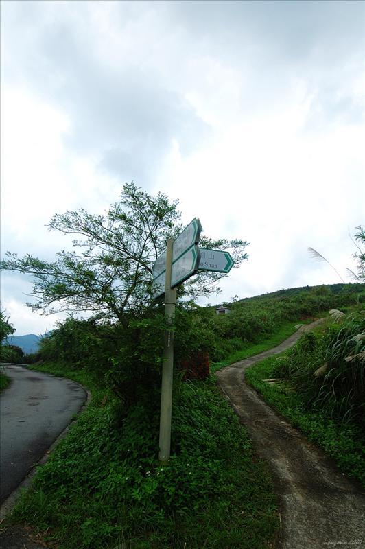 經過從走馬崗下來的分岔路口