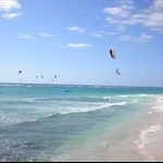 http://barbados.org/barbados_surfing_vacations.php